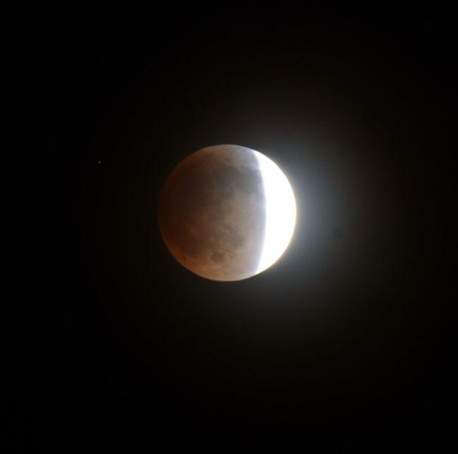 Luna Eclipse