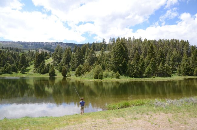 Fishing at Joffee Lake, Yellowstone National Park