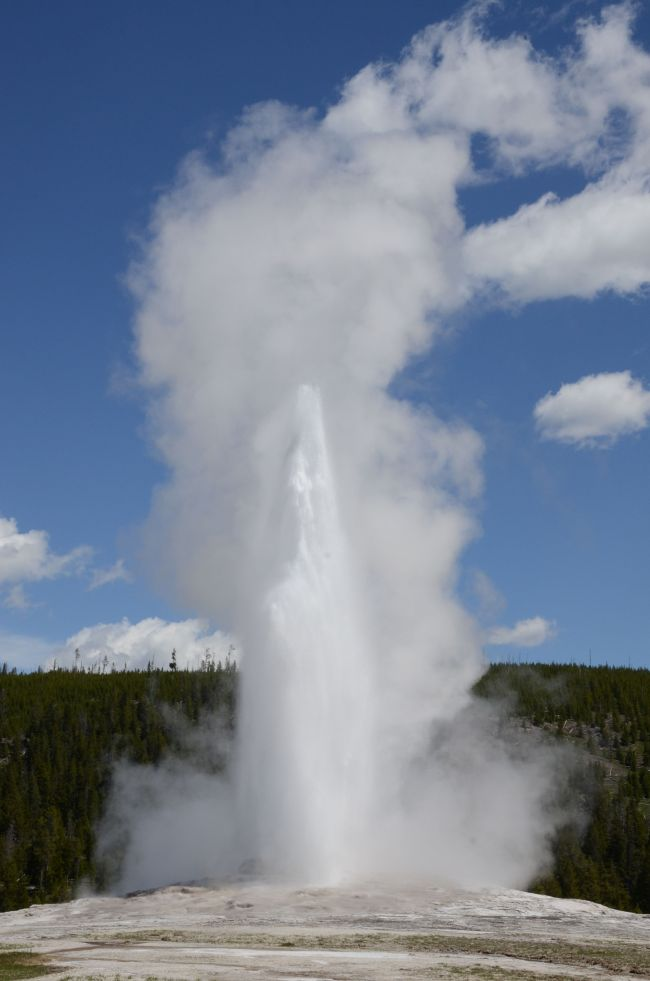 Old Faithful Geyser at Yellowstone
