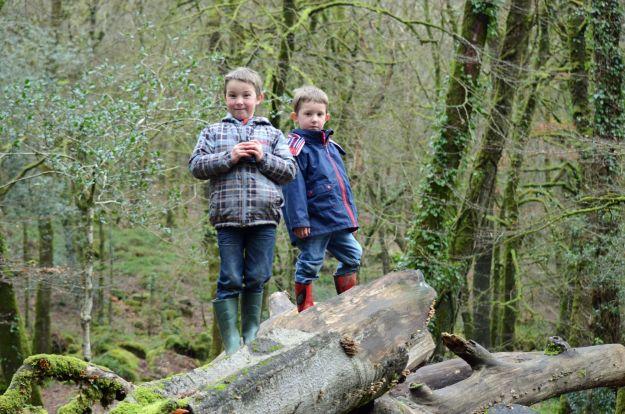 Boys at Golitha Falls