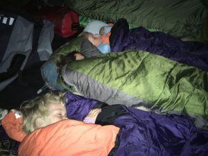 sleepign babies